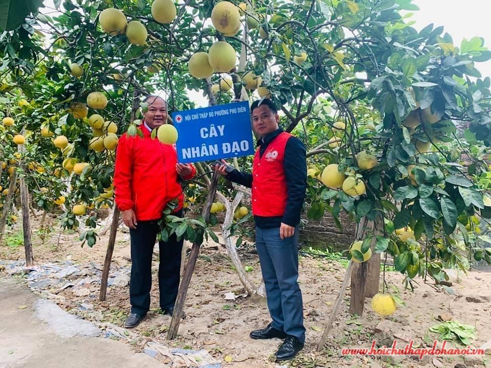 """""""Trồng cây nhân đạo""""- Cách làm mới ở Phú Diễn"""